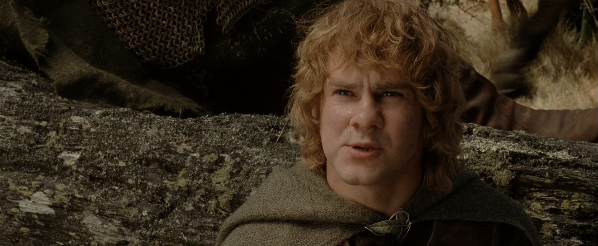 Meriadoc Brandybuck (Merry) - 5 Quotes by Character