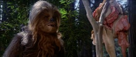 Nice work. Great, Chewie. Great. Always thinking with your stomach.